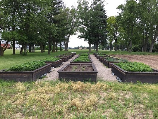 The Community Garden at The Bellevue Hospital in Ohio